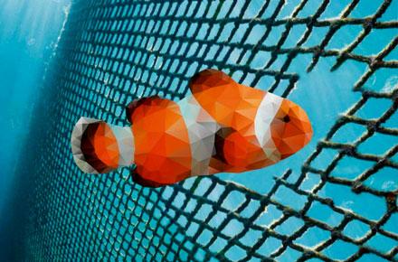 De redes de pesca abandonadas a alfombras modulares